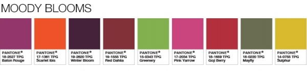 Pantone Color Of The Year 2017 Palette